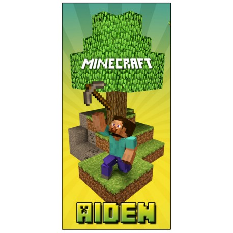 Personalised Minecraft Pen