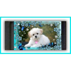 Personalised Photo Stubby Cooler