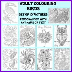 Personalised Adult Colouring - Birds