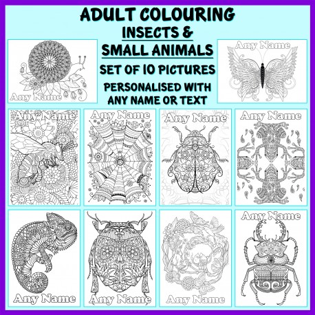 Personalised Adult Colouring - Insects and Small Animals